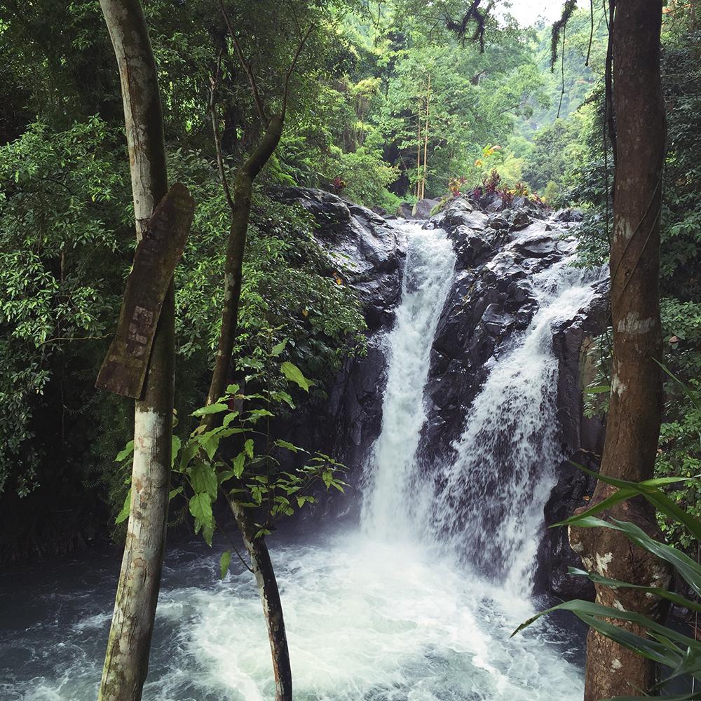 Secret Garden Of Sambangan